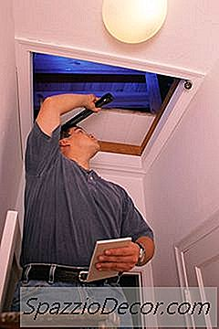 Pode Uma Casa Com Molde Ser Consertada O Suficiente Para Considerar Comprá-La