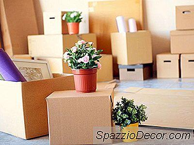 Suggerimenti Per Lo Stile 7 Per Passare Da Un Appartamento A Una Casa