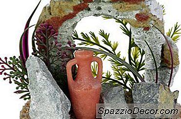 Blågrøn Alger På Kunstige Planter I Akvarier