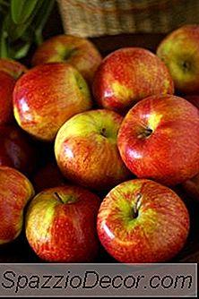 Har Økologiske Grønnsaker Flere Næringsstoffer?