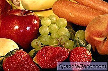 Nutrition Basics För Bättre Hälsa Och Prestanda